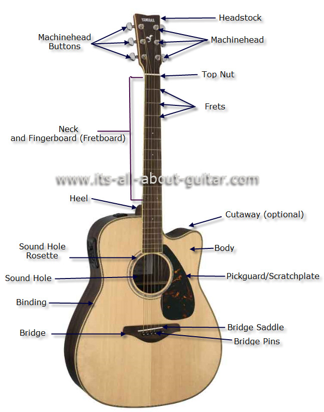 of an acoustic guitar diagram of an acoustic guitar